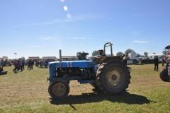 2010-tractors-(16)-1326488185